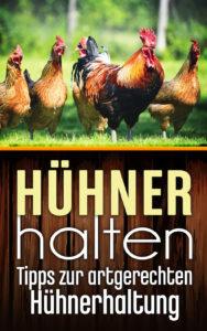 Ratgeber PDF zur Hühnerhaltung herunterladen